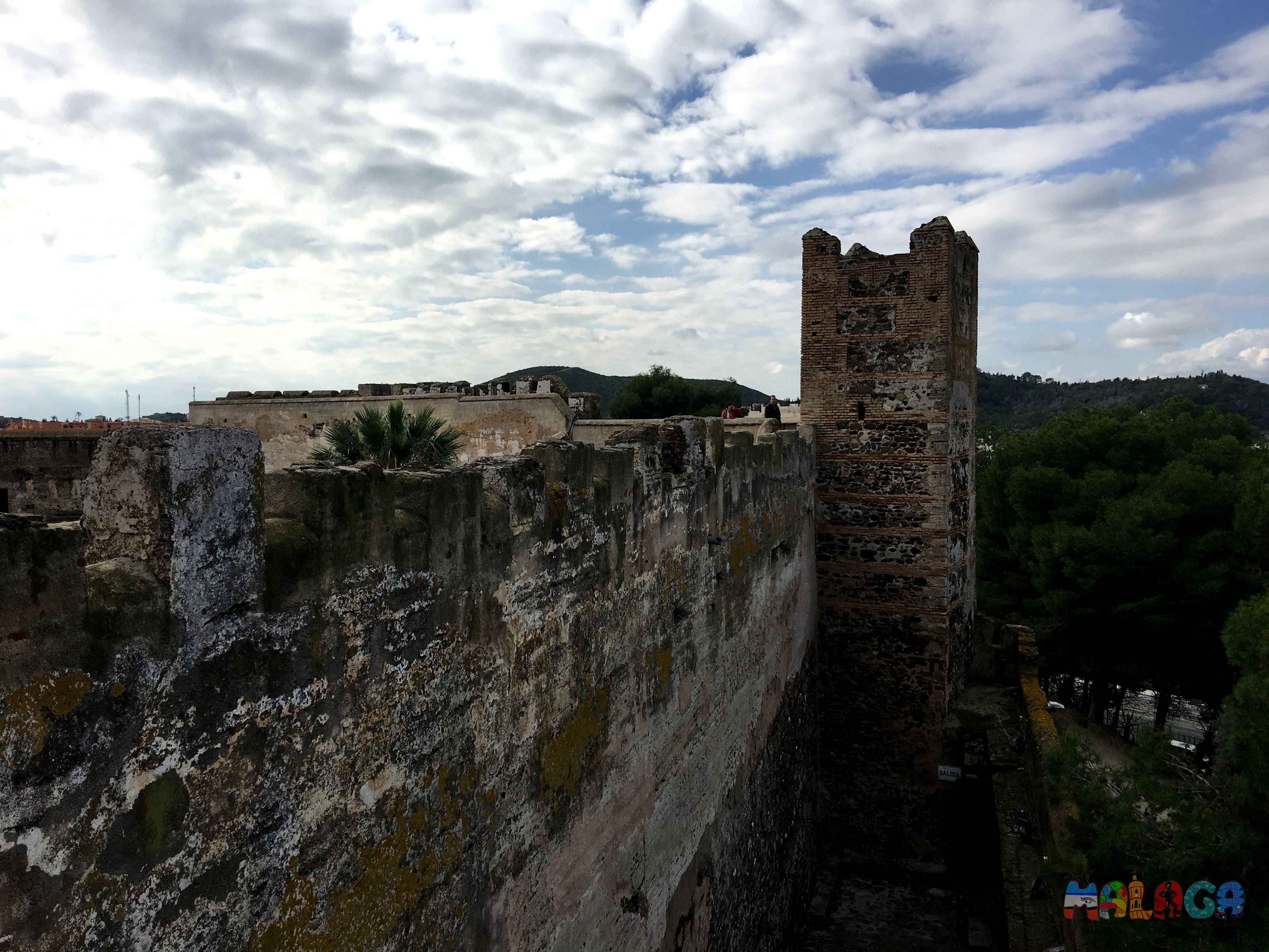 Castillo-Sohail9